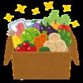 地元農家の朝採れ野菜をご提供♪