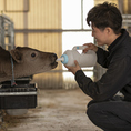ドイツ語で「愛」を意味する店名リーベ。自社牧場で愛情をかけ育てた黒毛和牛を店舗でご提供することを源流に愛の心は「命への感謝」「お客様への感謝」「心を込めたサービス」として牧場から店舗へ引き継がれています