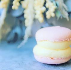 chubby macaron sapporo [ 北海道札幌市中央区 ]
