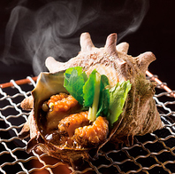 寿司以外のメニューも充実