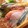 漁港から毎日新鮮な魚介が入荷してきます。道内では中々食べられない珍しい魚や貝類も多数入荷してきます。