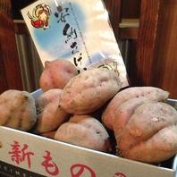 ★今月のおすすめ野菜★安納さげ芋(鹿児島種子島)