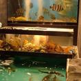 その日仕入れたせ新鮮な魚貝多数を豊富に取り揃えております。