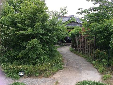 まるで魔法にかかった様に時間を忘れ心地よいひと時を。緑に囲まれた隠れ家カフェ。