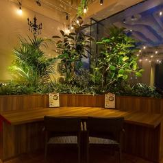 【フリーWi-Fi・全卓コンセント完備】たくさんの観葉植物を目の前に、ボタニカルな雰囲気満点のカウンター席。広々としたテーブルで優雅なカフェタイムはいかがですか?