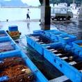 漁場は、香住漁港より船で約5時間の丹後半島沖、水深800m~1000mのところでかご漁で捕獲