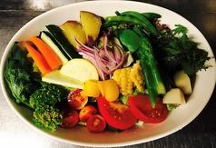 シェフのおまかせサラダ(フルサイズ/ハーフサイズ)