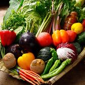 毎日仕入れる新鮮な旬野菜を使用し、彩り鮮やかなバルメニューをご用意♪野菜を使用したヘルシーメニューは女性におススメの逸品◎八王子での宴会,飲み会,二次会などに是非ご利用ください。八王子でバル居酒屋をお探しなら当店へ!