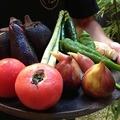 料理メニュー写真旬野菜のサラダ