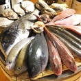 鮮魚の煮つけも荒磯水産では様々な魚をご用意してます☆お好きなお魚をお選びください!早もの勝ちっっっ☆