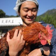 天草大王の鶏舎訪問