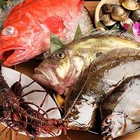 伊勢志摩・熊野灘直送 新鮮な活魚・鮮魚♪