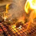 炭焼 焼鳥 猿一のおすすめ料理1