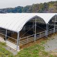 和牛焼肉LIEBEは脈々と5代続く老舗農場「帆保畜産」の直営焼肉店です。牛をとことん愛し育て、その甲斐あって和牛の最高峰「農林水産大臣賞」を度々獲得いたしました