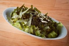レタスの生えるサラダ