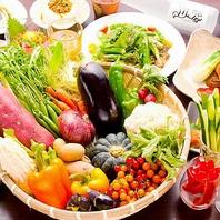 産地直送の新鮮野菜20種類も食べ放題!!