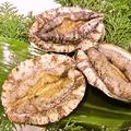 料理メニュー写真房州産アワビの鉄板焼き 100g