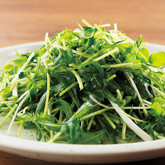 しゃきしゃき青菜の塩炒め