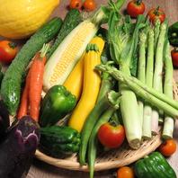 ■朝採れ!地物の無農薬野菜使用■