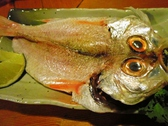 串の陶のおすすめ料理3