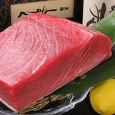 国産天然生本マグロ!いかがでしょう?この色、艶・キメ細やかで濃厚な味わい!日によっては大トロ・中トロもご提供しております!