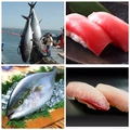 料理メニュー写真名物!沖縄県漁港直送!!生マグロ(赤身&カマトロ肉)ネットリ食感!鮮度が伝わります♪