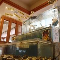鮮魚が泳ぐ大きな水槽★旨い魚が楽しめる店