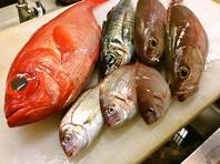 赤字覚悟!店主厳選のあげたての新鮮な魚のみを使用。