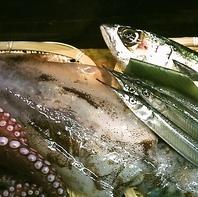地元大分産の鮮魚