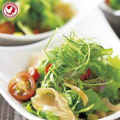 一人に一皿ずつの小さな とり鉄サラダ 和風