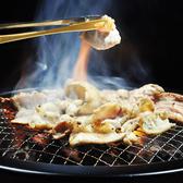 仙台ホルモン・焼肉 ときわ・ガッツ 富谷店の詳細