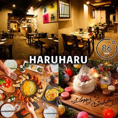 韓国バル HARUHARU 広島並木通り店特集写真1