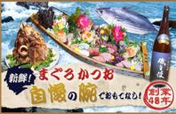 焼津港で採れた新鮮魚を自慢の腕でおもてなしします