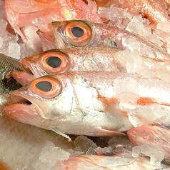 大漁酒場 魚樽 袋町支店のおすすめ料理1
