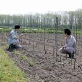 夏の間は農家の方に出向き新鮮な野菜を仕入れています