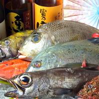 魚は全て天然魚にこだわる