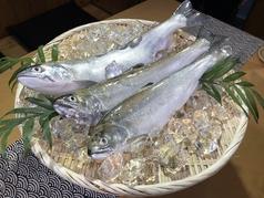 ビワマス料理 山本屋魚濱の雰囲気1