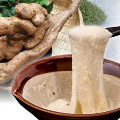 静岡 自然生 じねんじょのおすすめ料理1