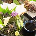 料理メニュー写真シャコ貝