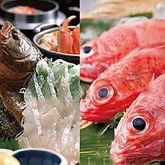 日本料理 高山の写真