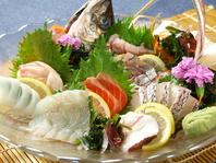 【産地直送の新鮮な海鮮】