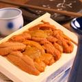 料理メニュー写真北海道直送 板ウニ