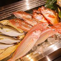 毎日仕入れる鮮度抜群の旬魚!仕入れの目利きは熟練です