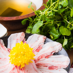 水炊き 吟醸もつ鍋 由乃のコース写真