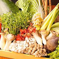 【新鮮野菜】しぶや畑の食べ放題はすべて獲れたて野菜♪