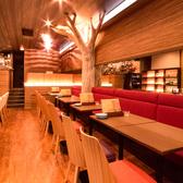 店内中央の大木が目を惹くオシャレな店内。こちらの席はつなげての利用で16名までの宴会が可能!