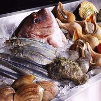 毎日直送!柳橋市場の新鮮魚介を使用