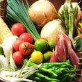 野菜ソムリエが選んだ本物の産直野菜をご紹介♪