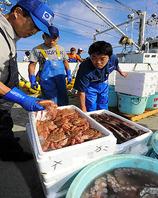 北海道の四季の魚介類を毎日空輸…