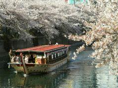 網元屋形船 あみ貞丸の写真